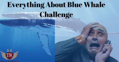 Everything About Blue Whale Challenge