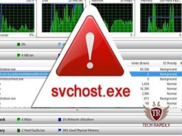 What is svchost.exe Why svchost.exe Running on My Windows