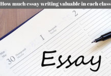 How much essay writing valuable in each class