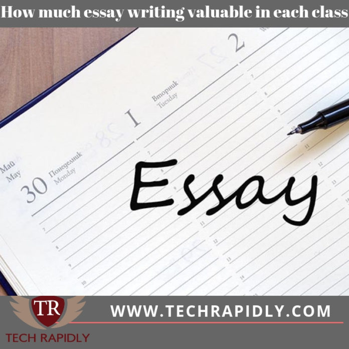 Write essay how much